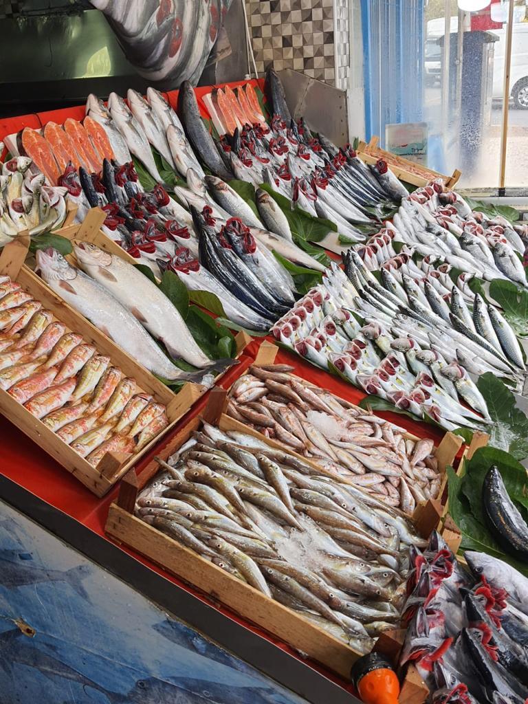 Mis Balık ÇİĞ BALIK